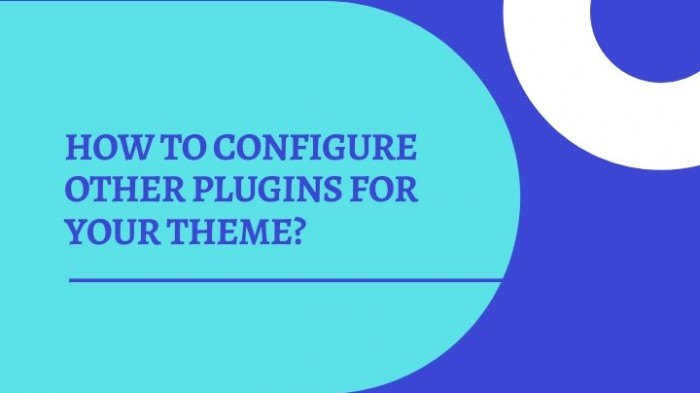 How to configure other plugins for your theme?