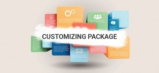 WordPress Customizing Service Package