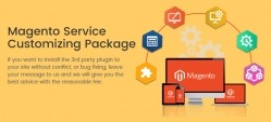 Magento Customizing Service Package