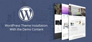 WordPress Theme Installation With the Demo Content
