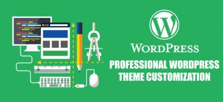 Professional WordPress Website Customization